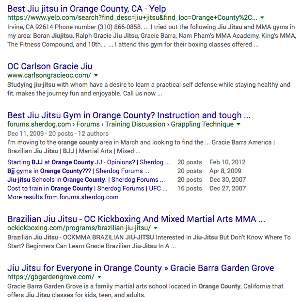 Google organic search results from martial arts marketing campaign